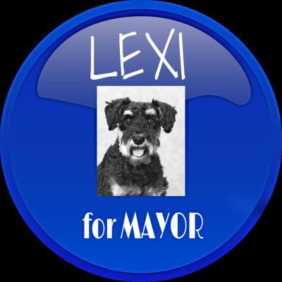 LEXI 4 MAYOR BLUE BUTTON