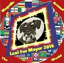 Campaign button world