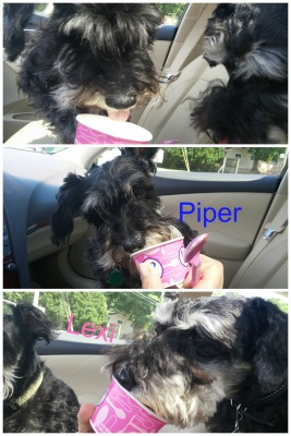 Piper-Lexi Ice Cream