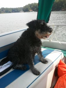 Lexi on boat seat
