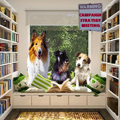 Lassie-Eddie books campaign