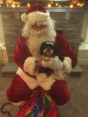 gracie-with-santa