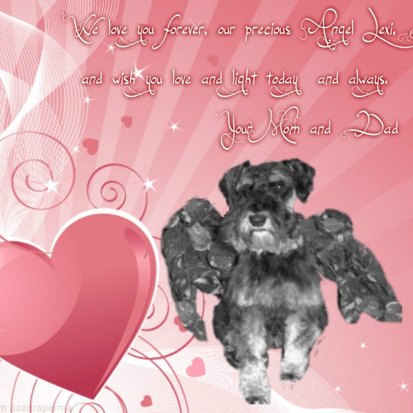 valentine-card-angel-lexi