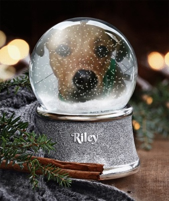 riley-in-snow-globe