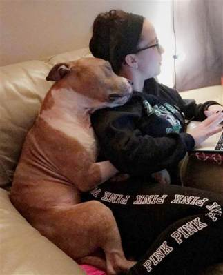 woman-shelter-dog-rescue-hug-today